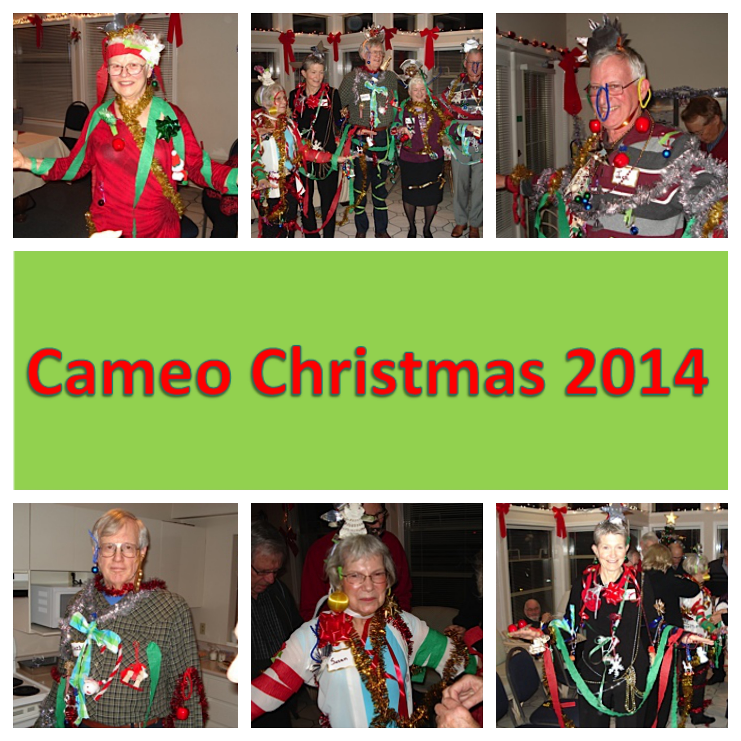 2014 Cameo Christmas Sign_Fotor_Collage